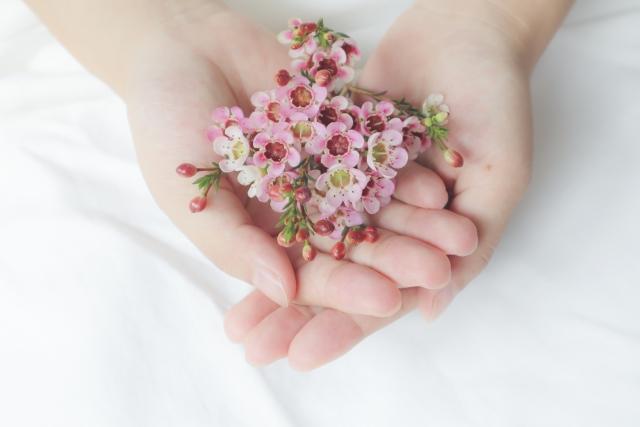 手のひらの上にのせた小さな花