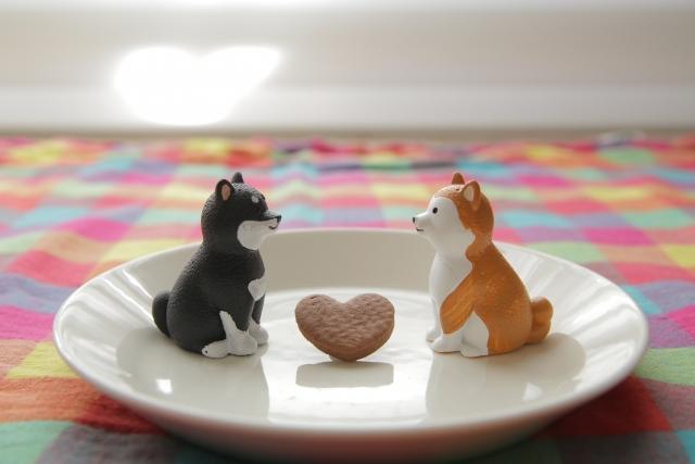 お皿の上に乗った犬の人形カップル