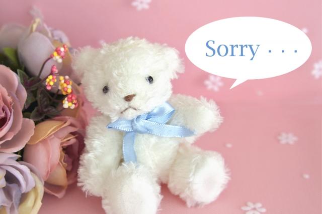 花とクマのぬいぐるみと「Sorry]の文字