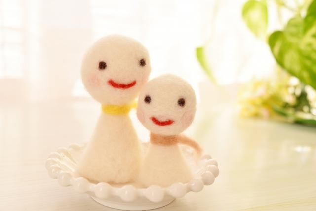 お皿に置かれた人形のカップル