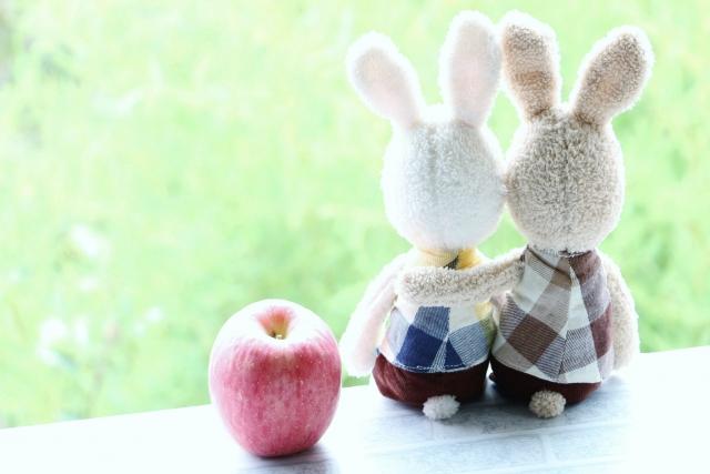 肩を組むウサギのカップル